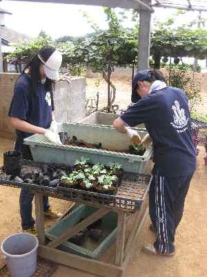 玉川大学研修生2010.9.4.JPG