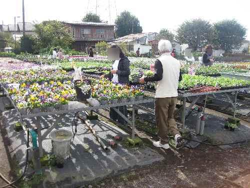 農場の様子2010.11.4④.JPG