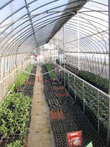 農場の様子2011.4.24④.JPG