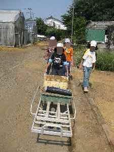 農業体験学習2010.7.24⑨.JPG